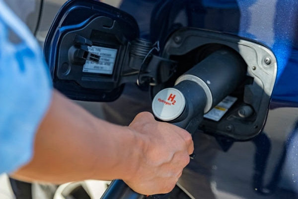 Fuel cells, a pathway to the hydrogen economy?