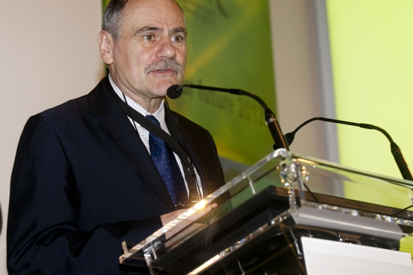 Michel Armand recognised as the top researcher in Spain in the field of energy