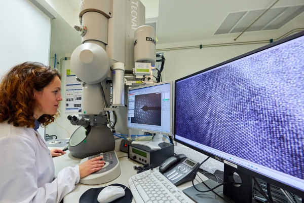 A deep insight into the battery world: electron microscopy beyond imaging