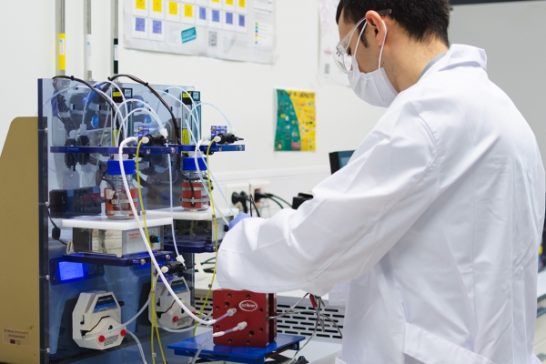 Redox flow batteries: a sustainable technology